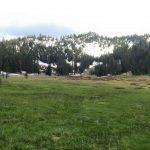 A Trek to Paradise Meadows Reveals Change Truisms